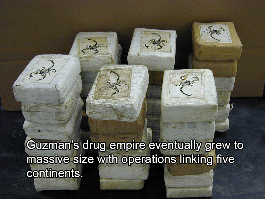Joaquin Guzman's Drug Cartel