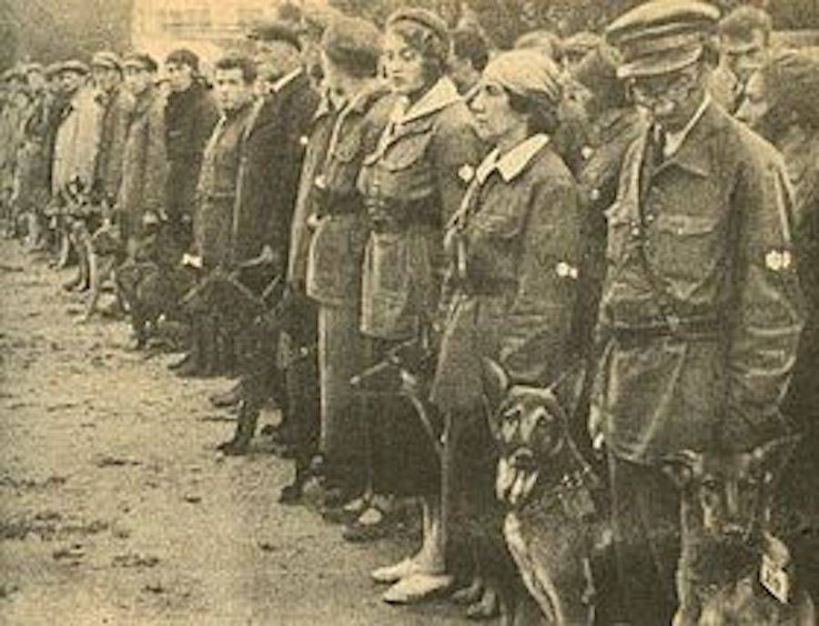 Dog Military Training School