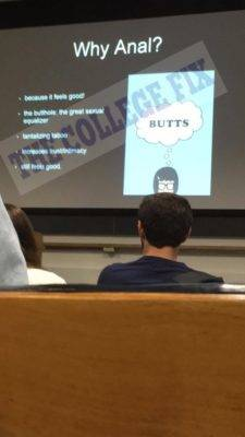 Harvard Anal