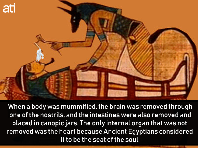 Mummifying Bodies In Ancient Egypt