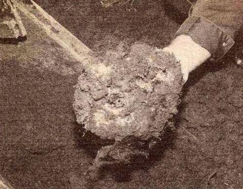 Robert Berdella: The Horrific Crimes Of The Kansas City Butcher