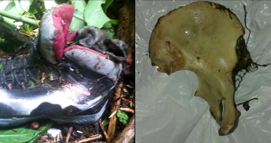 Pelvis Recovered From Kris Kremers and Lisanne Froon's Disappearance