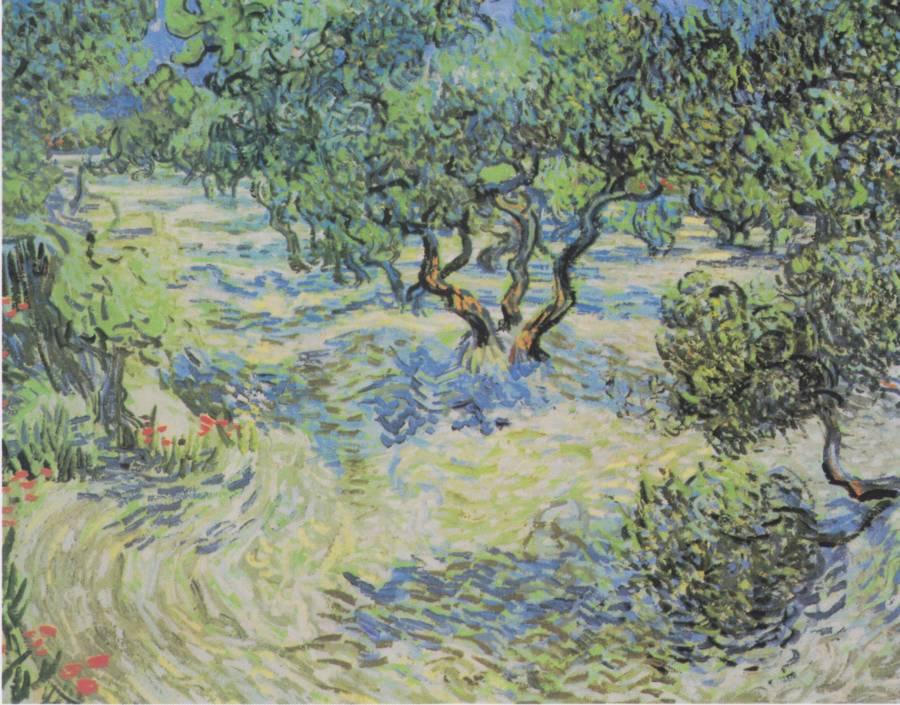 Vang Gogh Orchard Trees