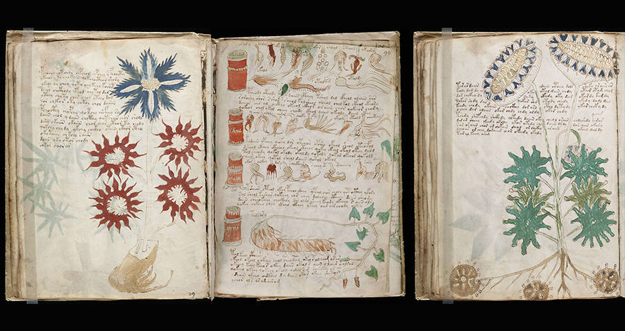 Archaeological discoveries Voynich Manuscript pages