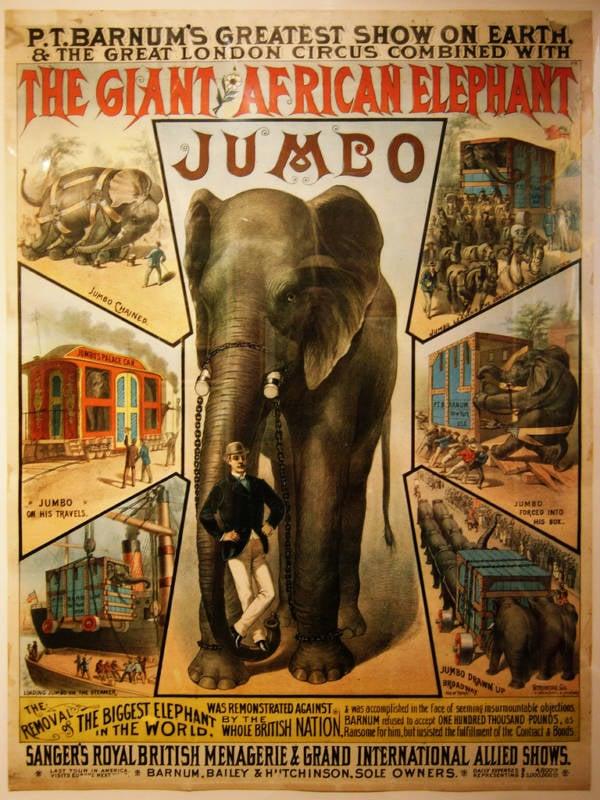 Jumbo The Elephant Poster