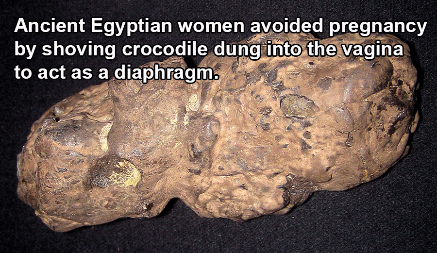 Sex Facts Ancient Diaphragm