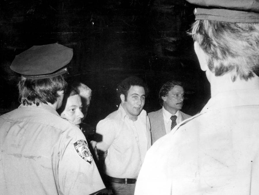 David Berkowitz Arrest