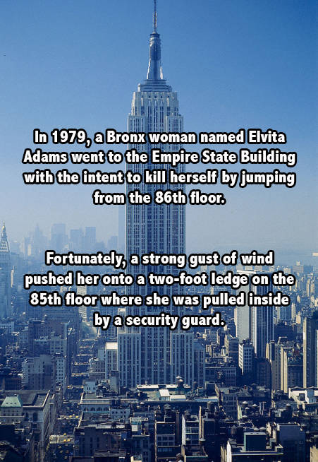 Empire State Suicide Attempt