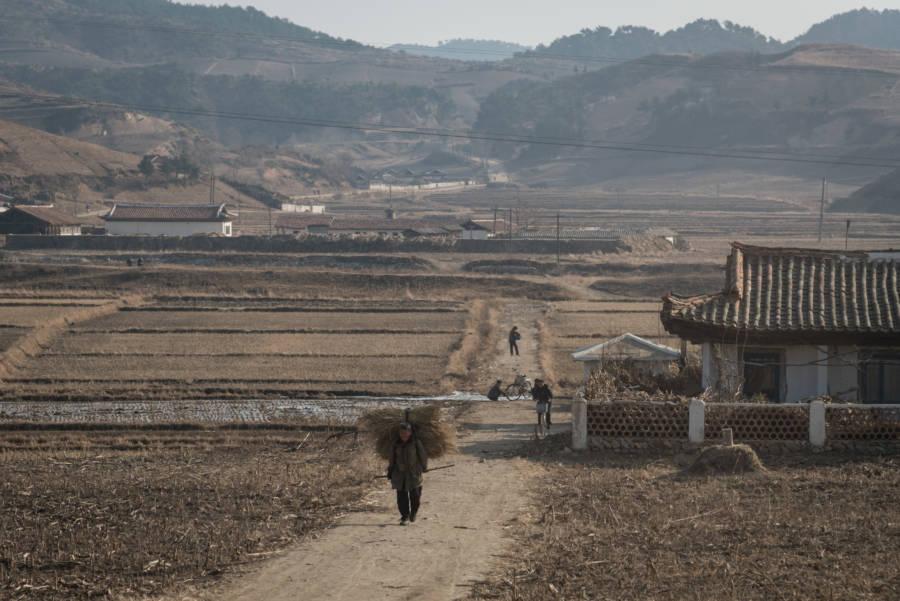 North Korea Hay Gate