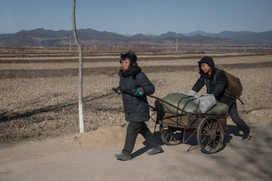 North Korea Pictures Cart