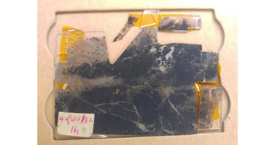 Oldest Fossils Found