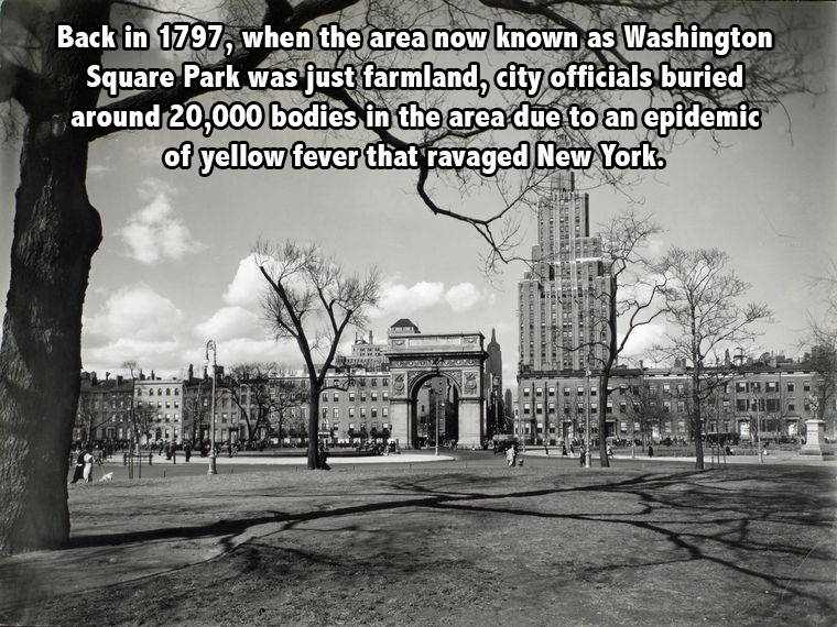 Washington Square Park new york facts