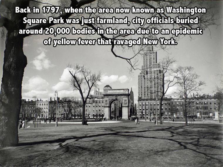 Washington Square Park new york facts