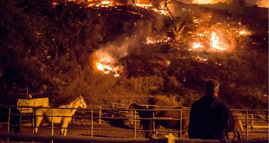 Hillside Fire