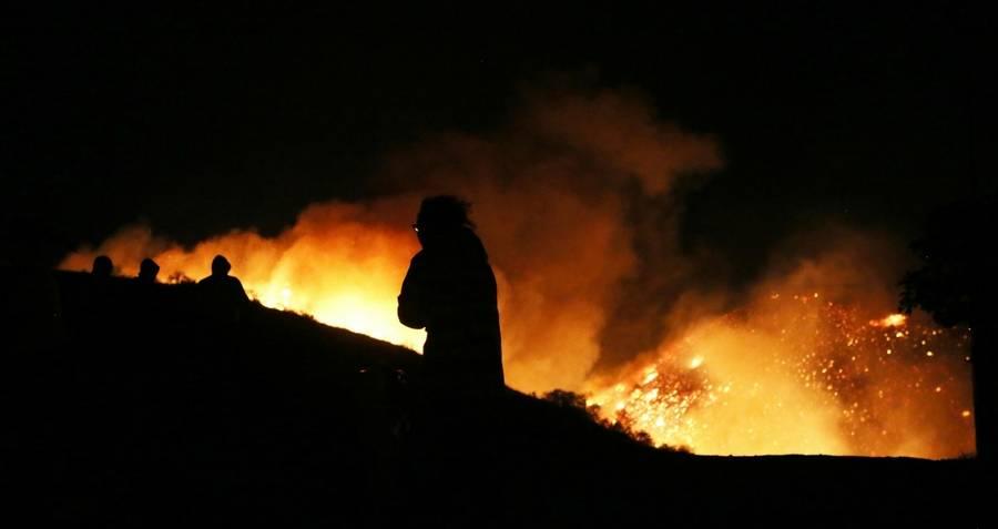 Los Angeles Creek Fire