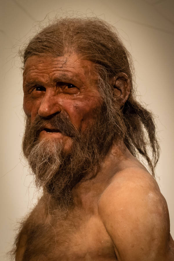 Otzi The Iceman Recreation