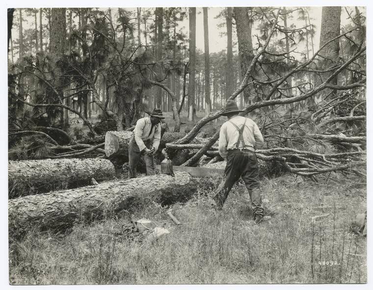 Black Lumbermen