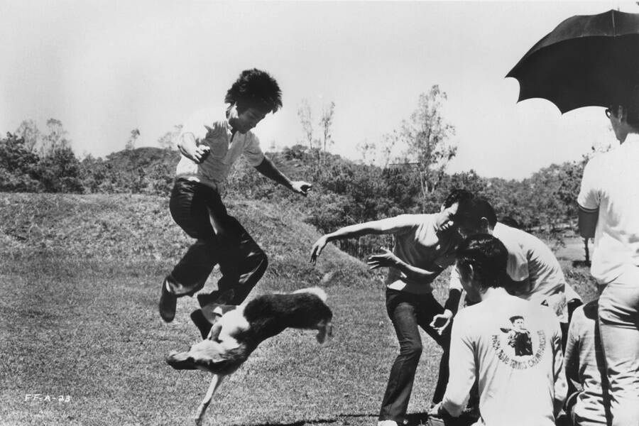 Bruce Lee Fighting A Dog