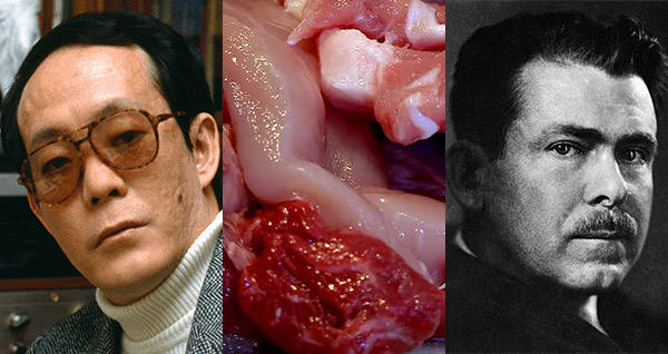 10 Reviews Of Human Flesh By Real Cannibals