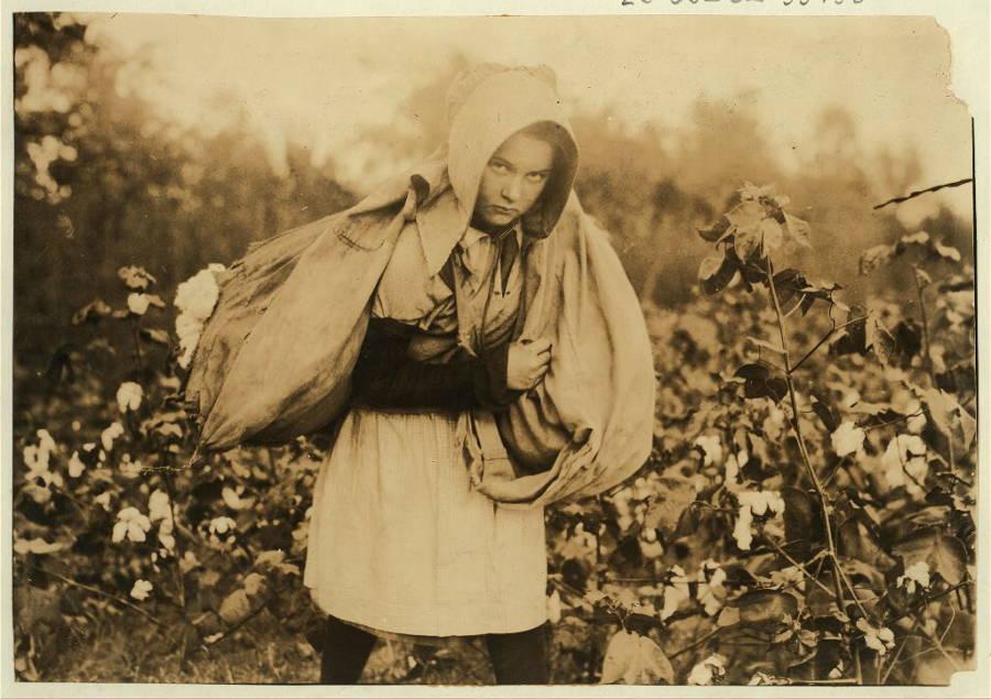 Cotton Picker Oklahoma