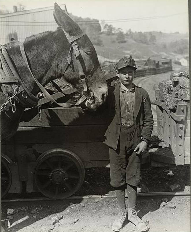 Mine Driver With Mule
