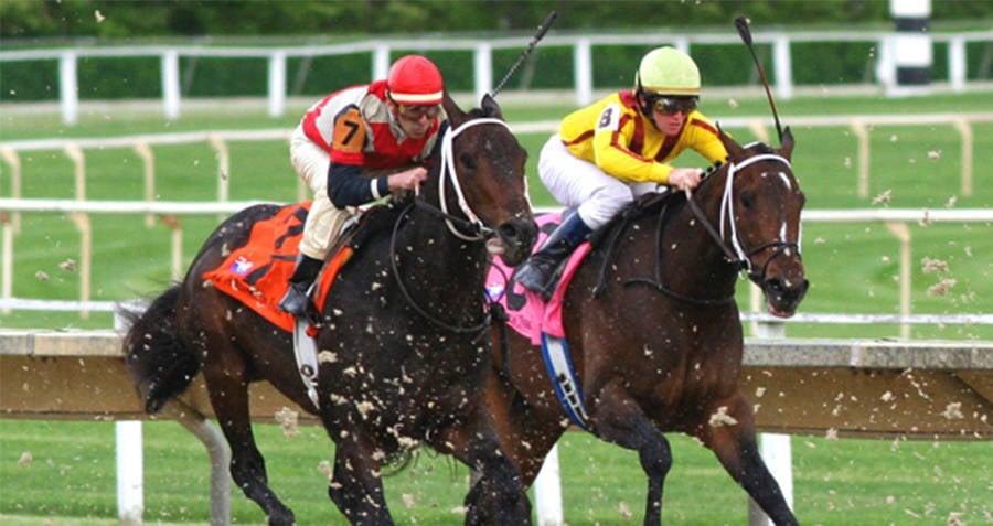 Horse Race Interesting Random Facts