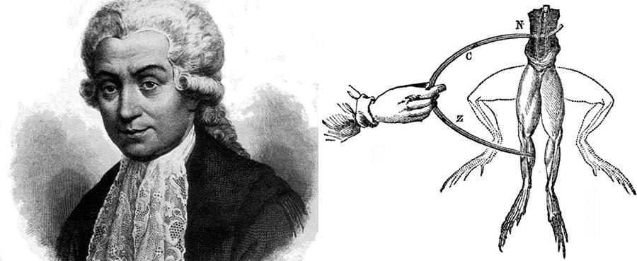 Galvani and his frog experiments