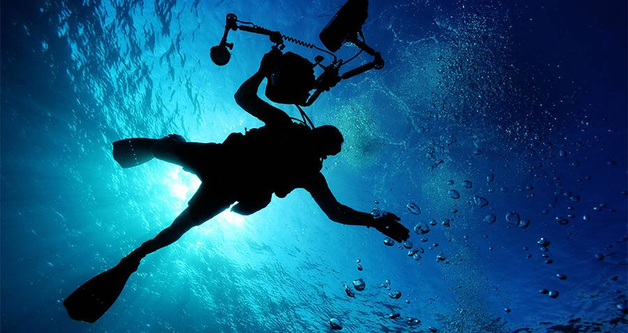 Diving Mechanism Body Facts