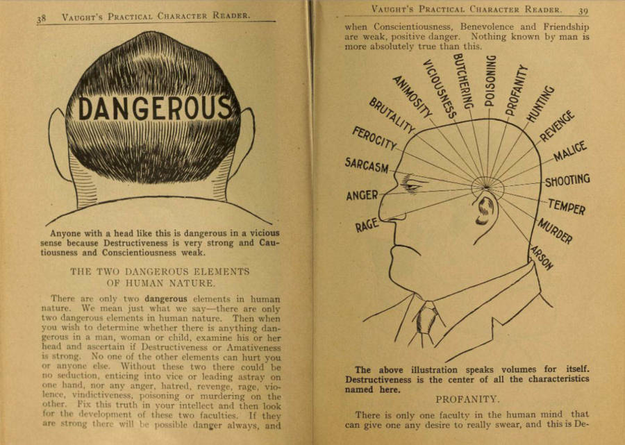 Phrenology Dangerous Elements