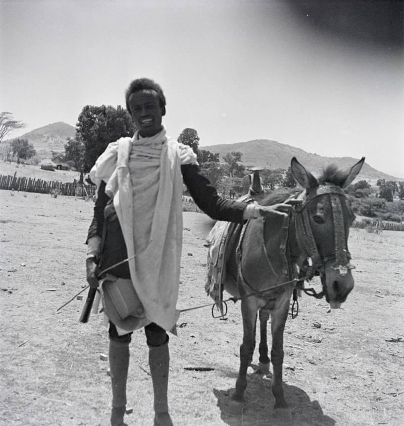 Ethiopian Man With Donkey