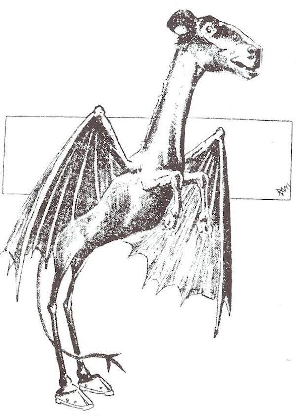 Jersey Devil Newspaper Sketch