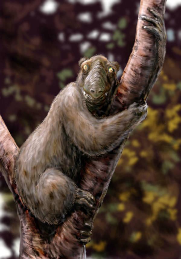 Weird Animals That Went Extinct 5