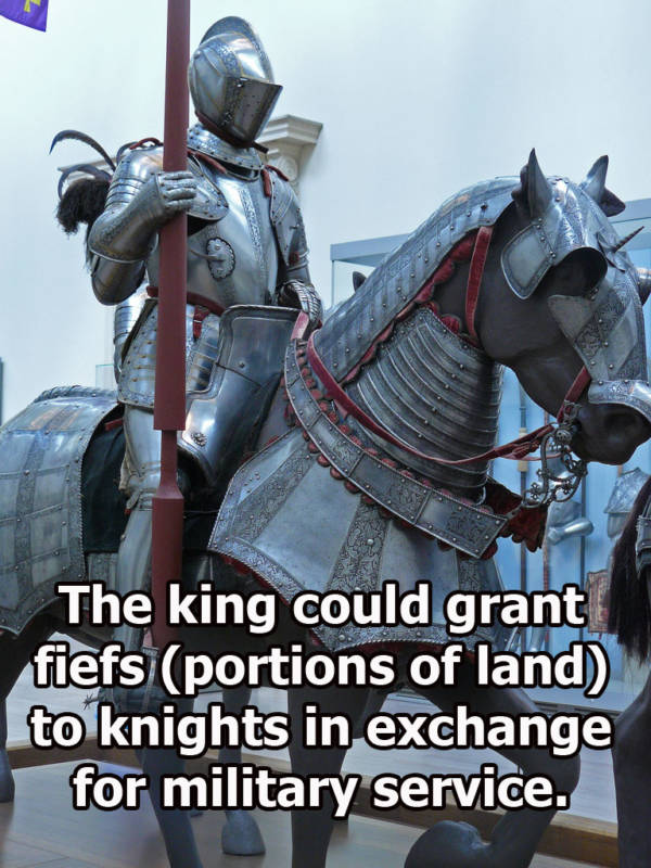 Knights' Horse In Armor