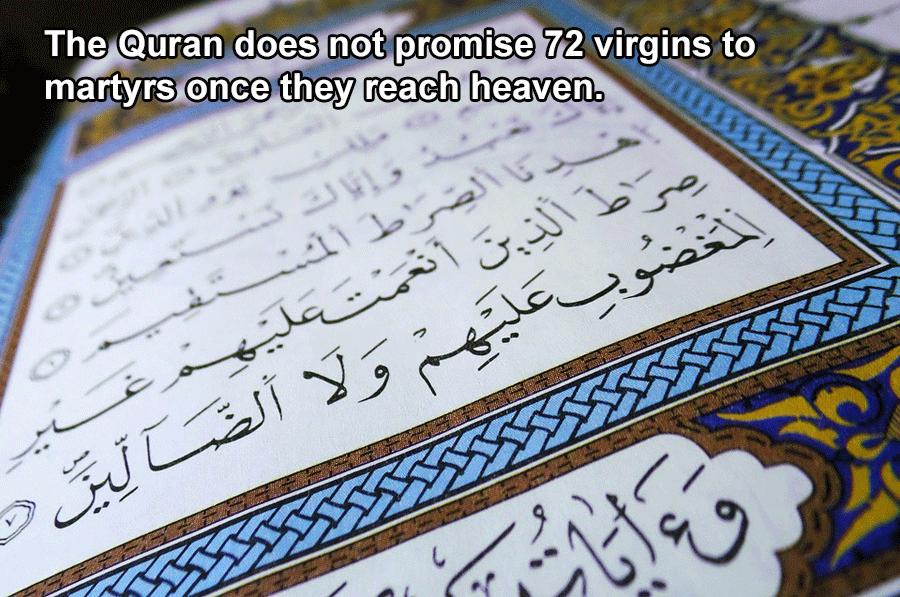 No Virgins
