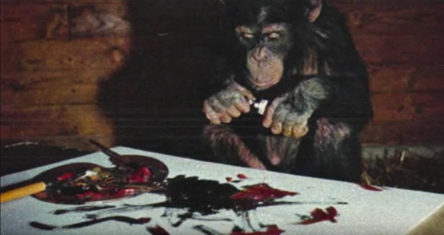 Pierre Brassau Sampling Paint
