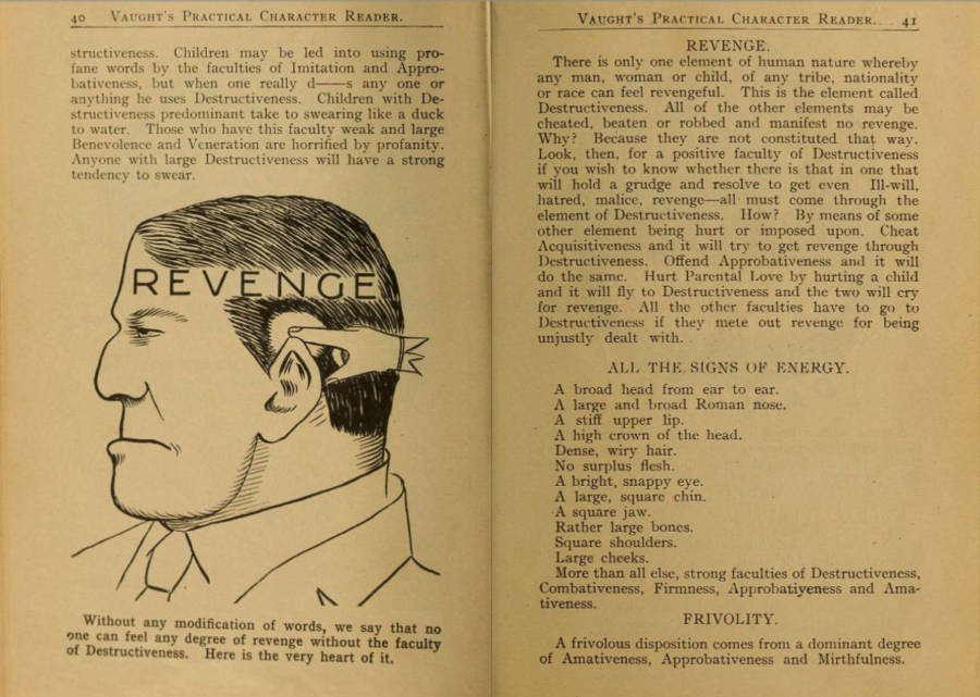 Old Phrenology Diagram