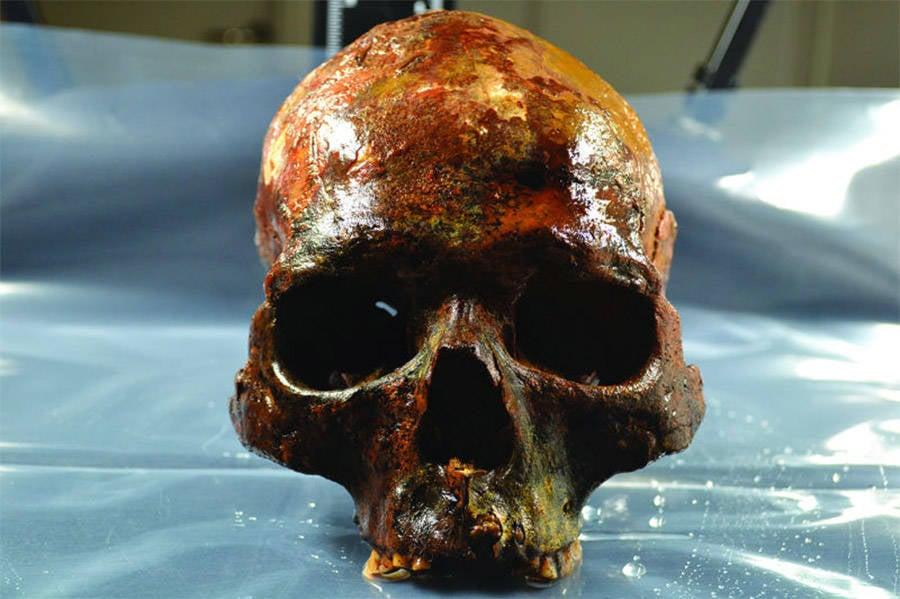 Skull Found