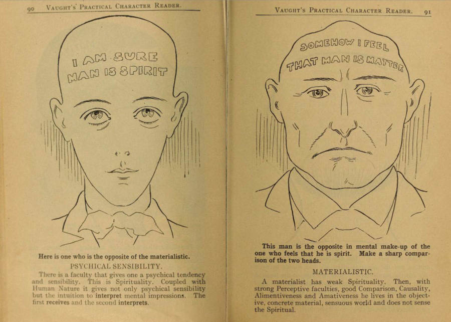 Phrenology Head Shape Chart