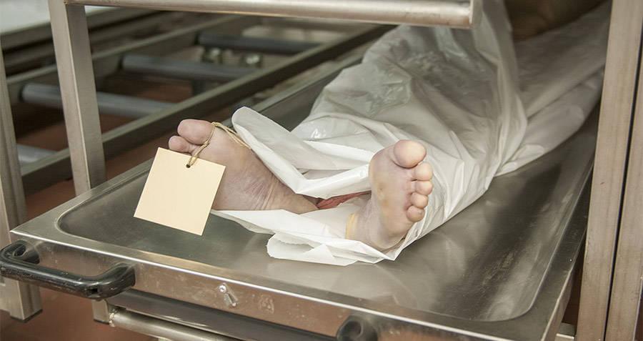 Dead Body In The Morgue