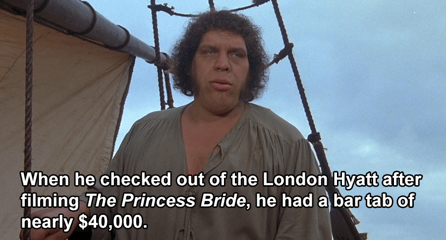Andre The Giant Facts Bar Tab