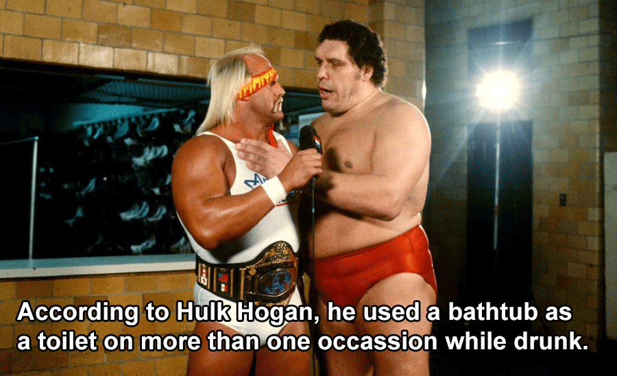 Andre The Giant With Hulk Hogan