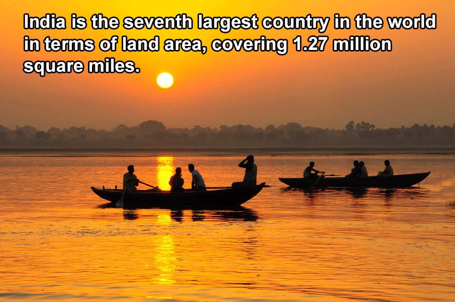 Land Area Of India