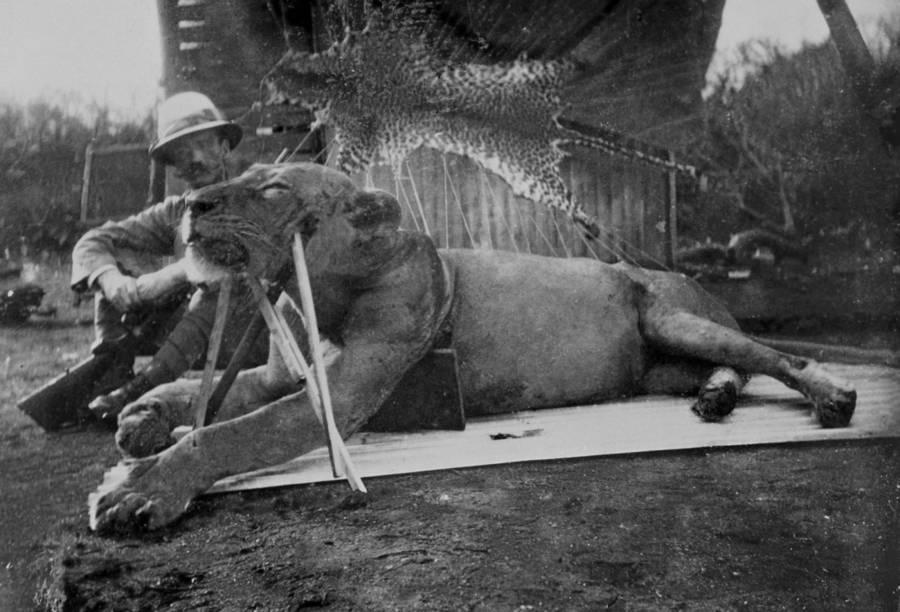 Colonel Patterson Tsavo Lions