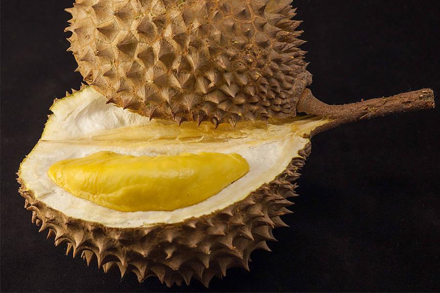 Durian Frut