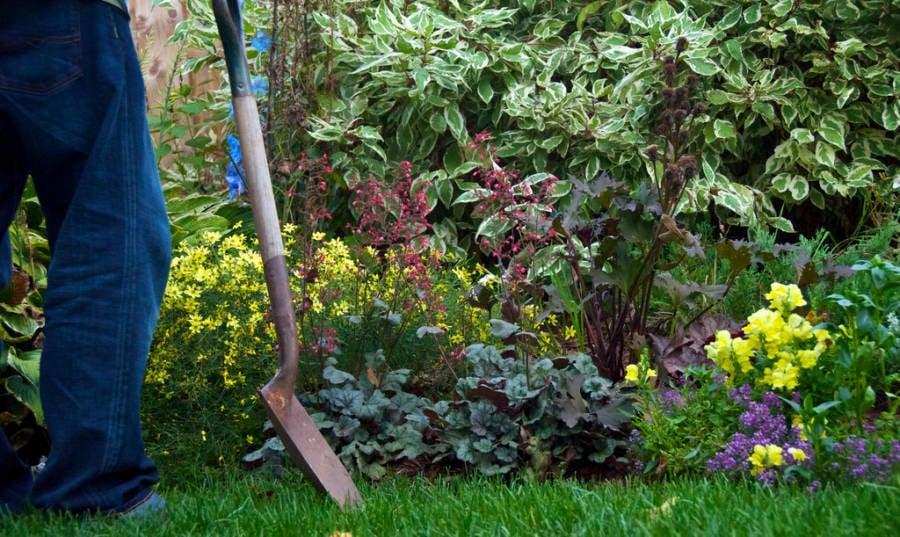 Gardening Today