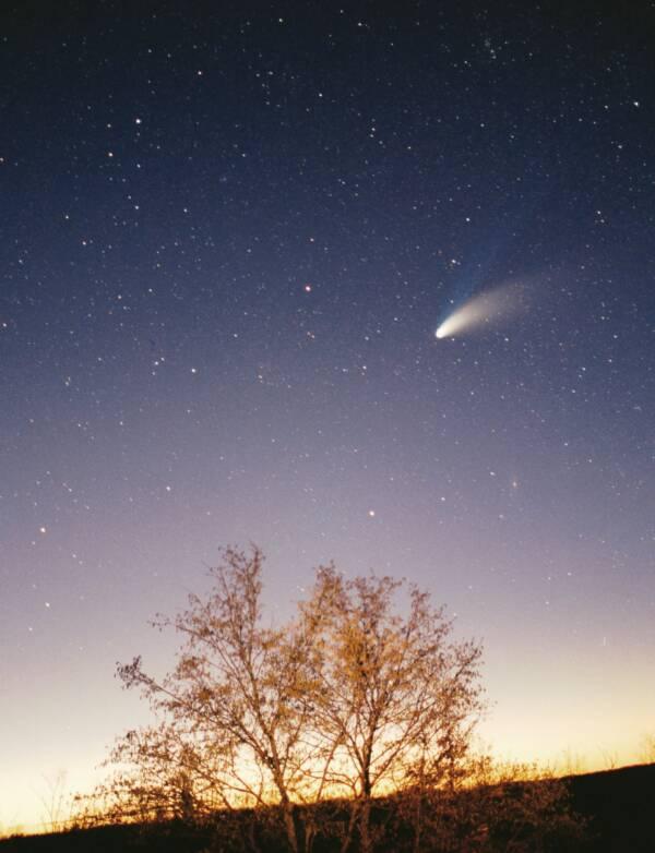 Hale Bopp Comet