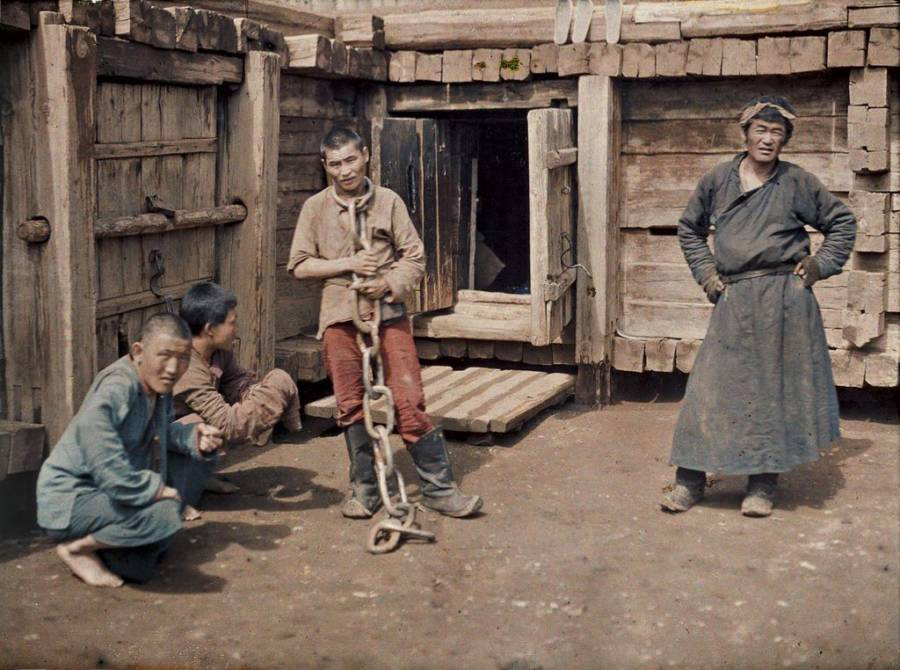 Mongolian Prisoner Old Color Photos