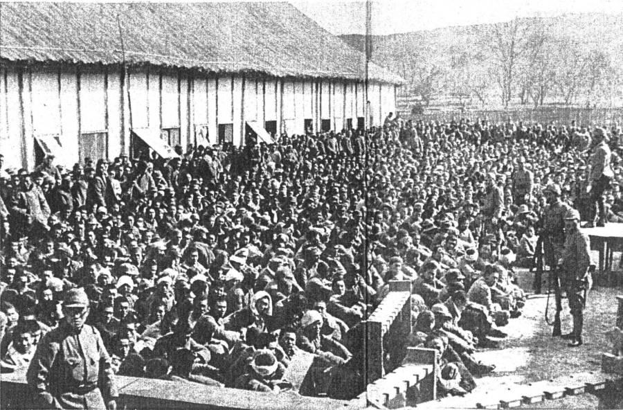 Nanjing foglyok
