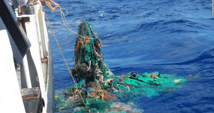 Scientists Pull Ghost Nets From Ocean