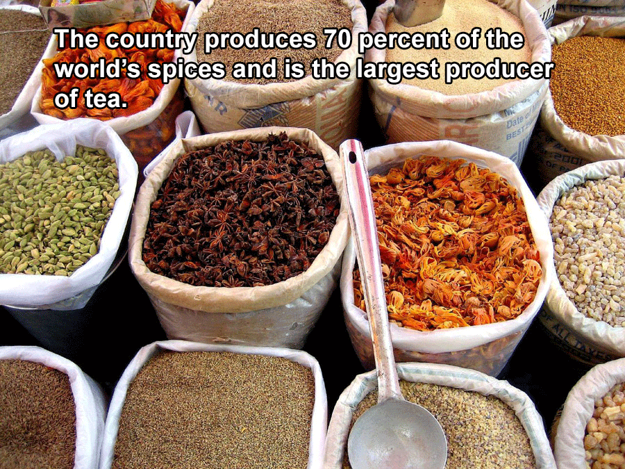 Interesting India Facts Spices